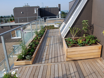 Bildergalerie Holzterrasse Holz Pur Terrassendielen